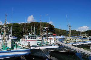 小網代漁港